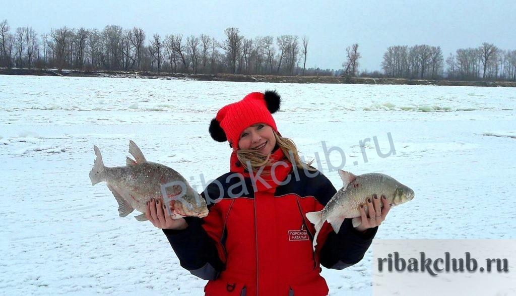 Какую мирную рыбу можно поймать