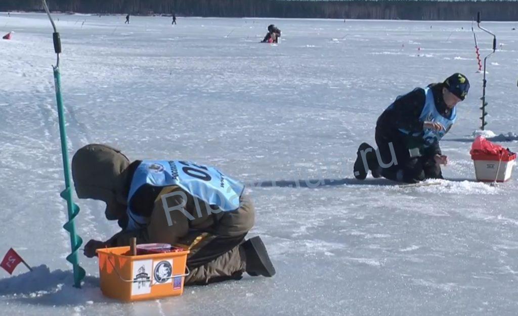 Спортивная ловля окуня зимой