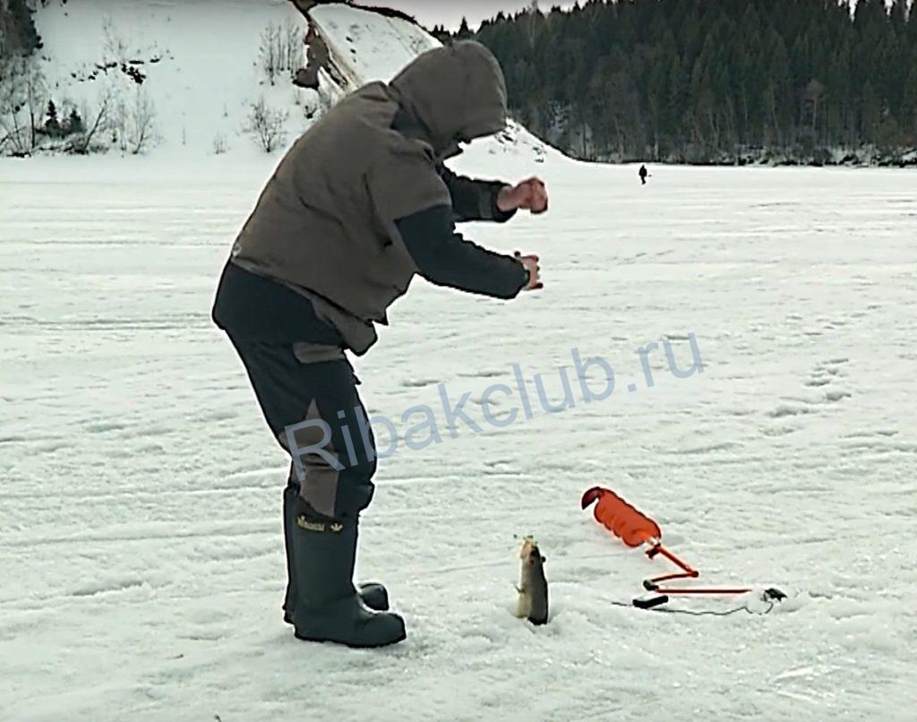 Игра балансиром на судака зимой.