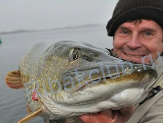 Ловля рыбы на «снасточку». Интересный способ ловли хищной рыбы в безклёвие. Фото. Видео.