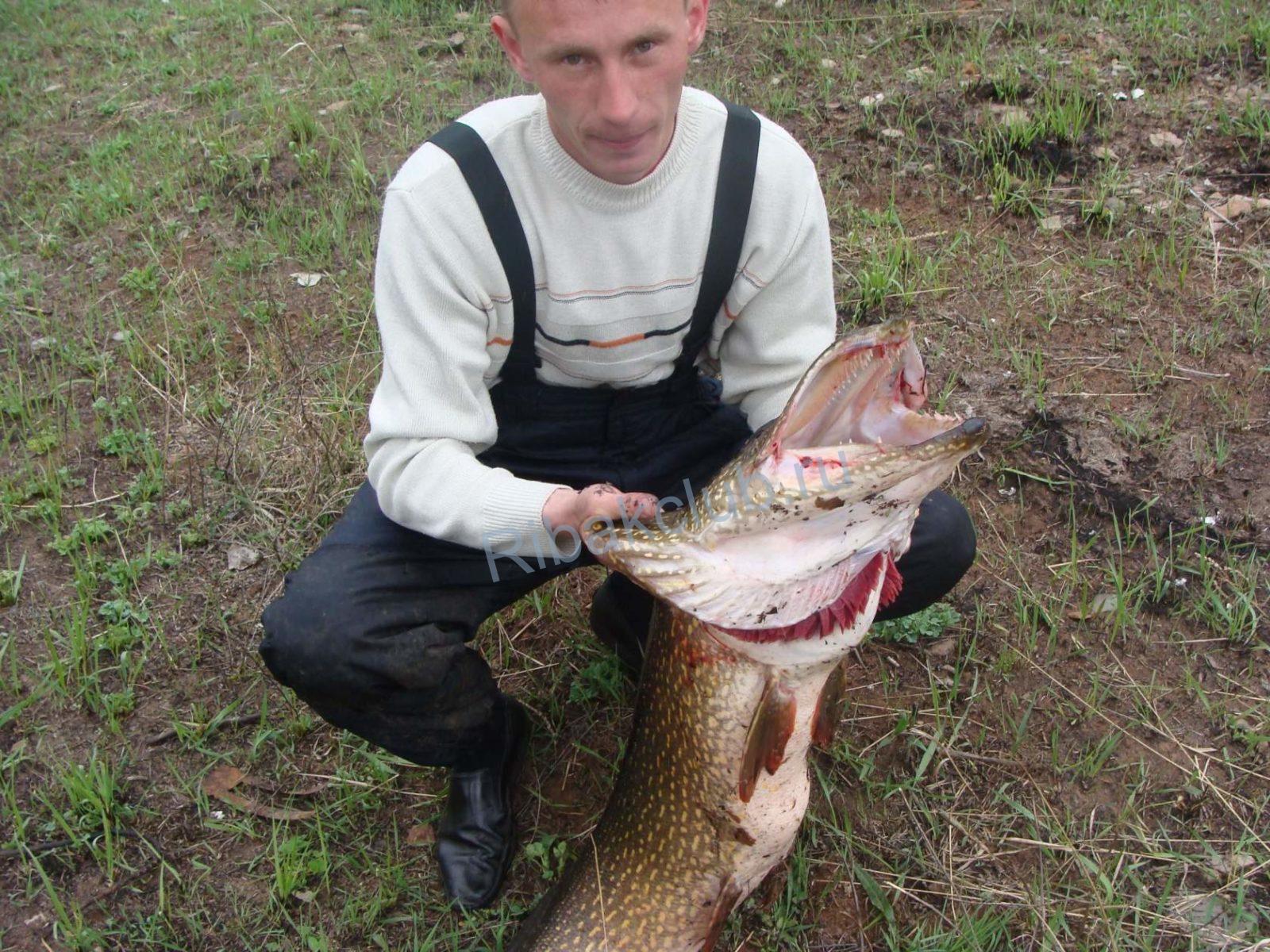 Начало жора и народные приметы. Особенности ловли рыбы осенью. Видео.