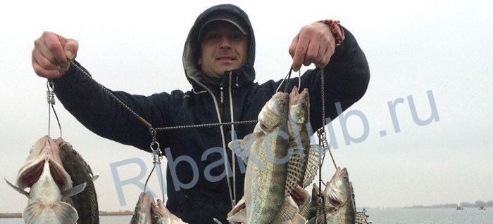 какая рыба ловится в октябре