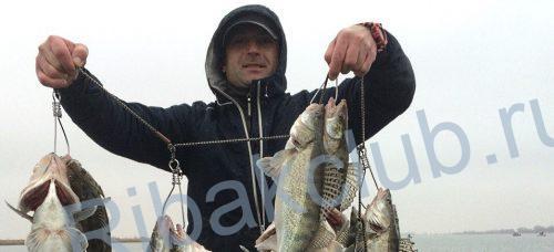 каха на рыбалке