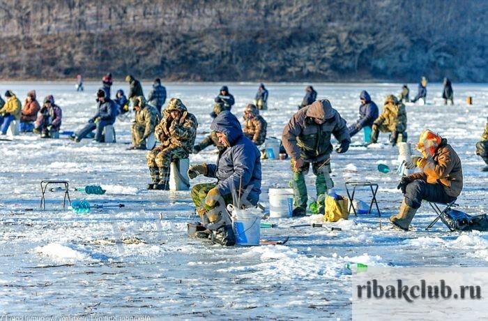 Зимний сезон у рыбаков. Особенности рыбалки в различных регионах страны.