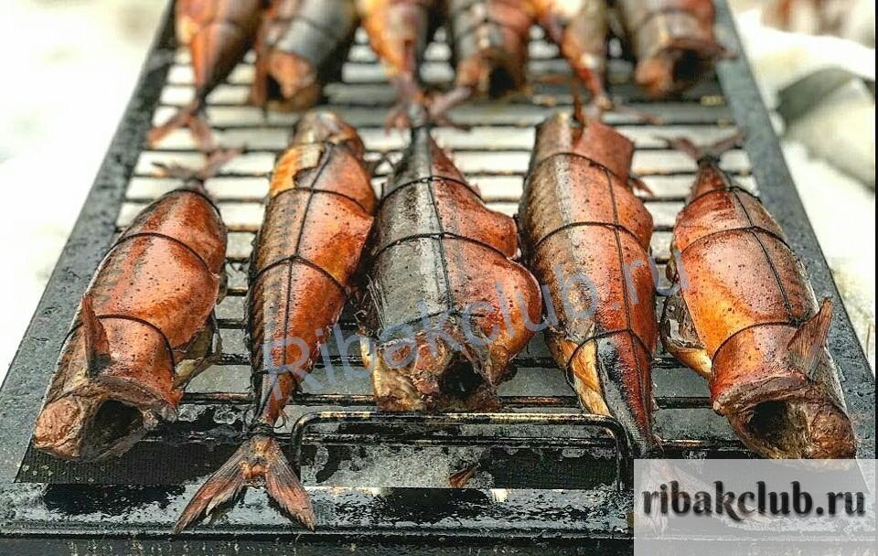 -рыбы-готовиться Секреты копчения рыбы. Как быстро и вкусно приготовить рыбу.
