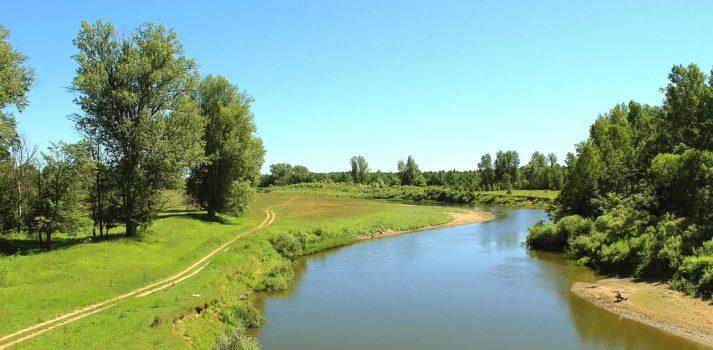 Река Вала. Какая рыба ловится на реке Вала в Удмуртии. Фото.