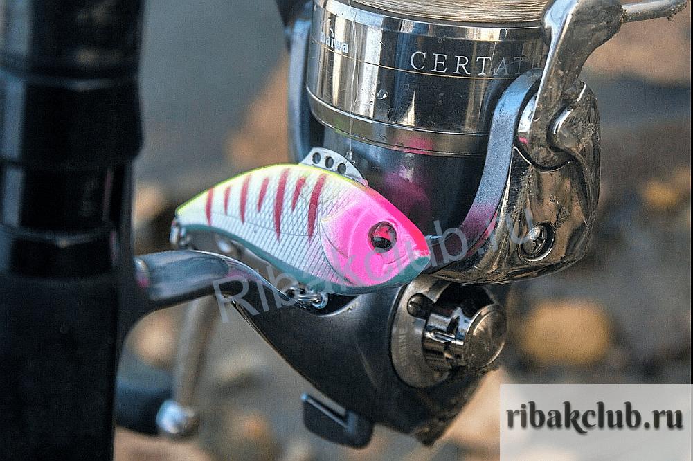 Приманка для зимней рыбалки