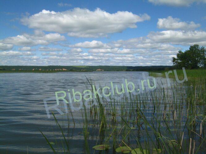 Ловля рыбы на реке Кама на крэнк